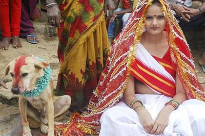 Девушка из Индии вышла замуж за пса