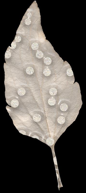 cvd inner storm salvia leaf 3 +S.png