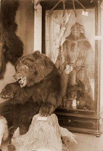 Вид экспонатов в павильоне Промыслы и охоты - манекен охотника и чучело медведя.