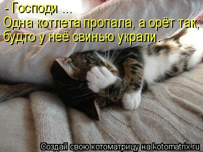 http://img-fotki.yandex.ru/get/5106/63000659.8d/0_74311_54e882f2_L.jpg