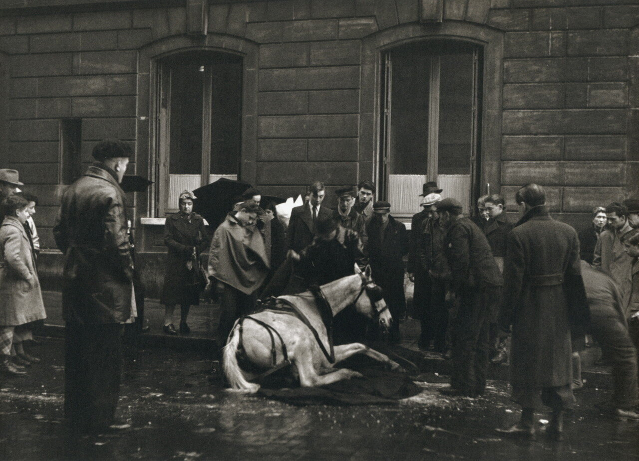 1942. Павшая лошадь