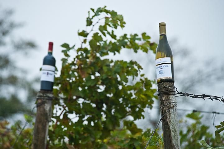 рекламная фотография в пасмурный день. фотосъемка бутылок вина. фотограф Кузьмин