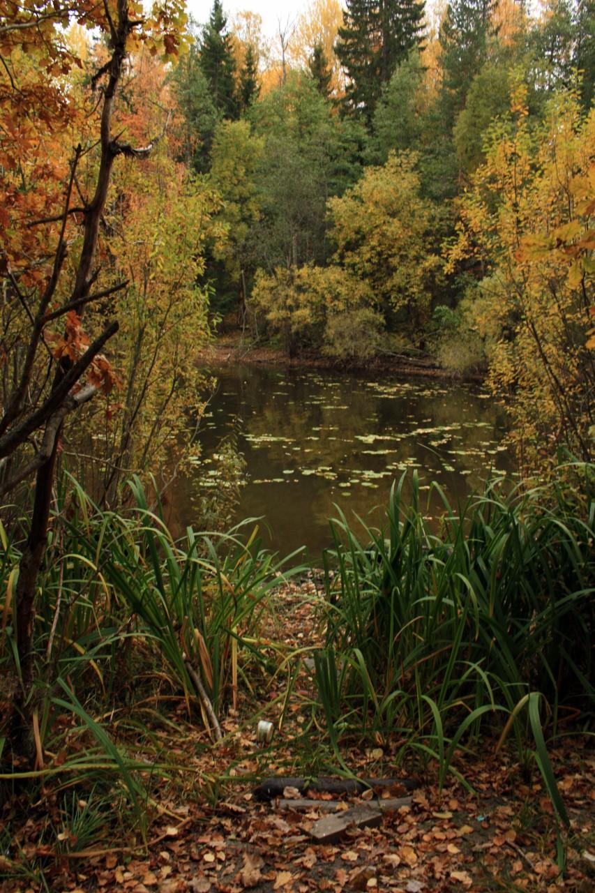 Золотая осень на Валааме