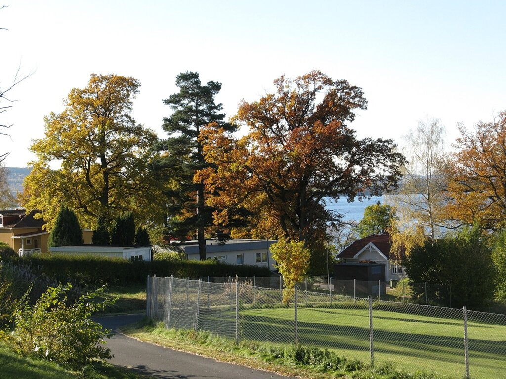 Southern Sweden. Golden autumn
