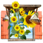 Flowers - Sunflowers Window