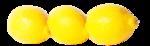 цитрусы (50).png