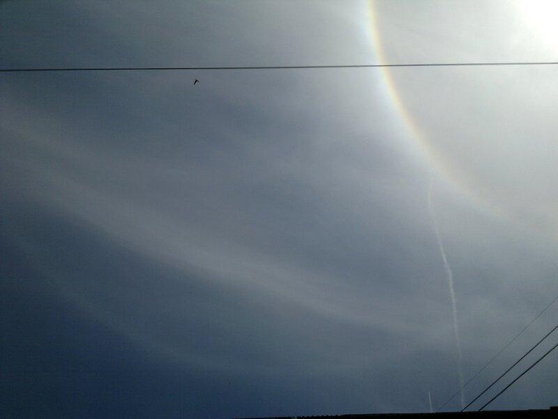 Гало 2012.06.26 13:06