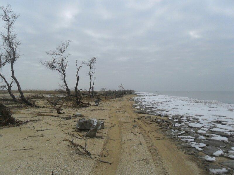 У моря ...SAM_5261.JPG