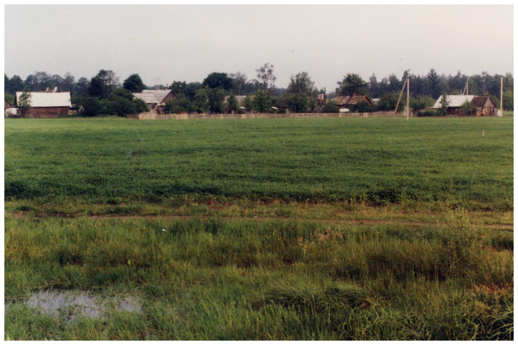 Небольшая деревня в Беларуси, Июнь