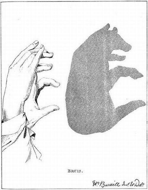 тени руками
