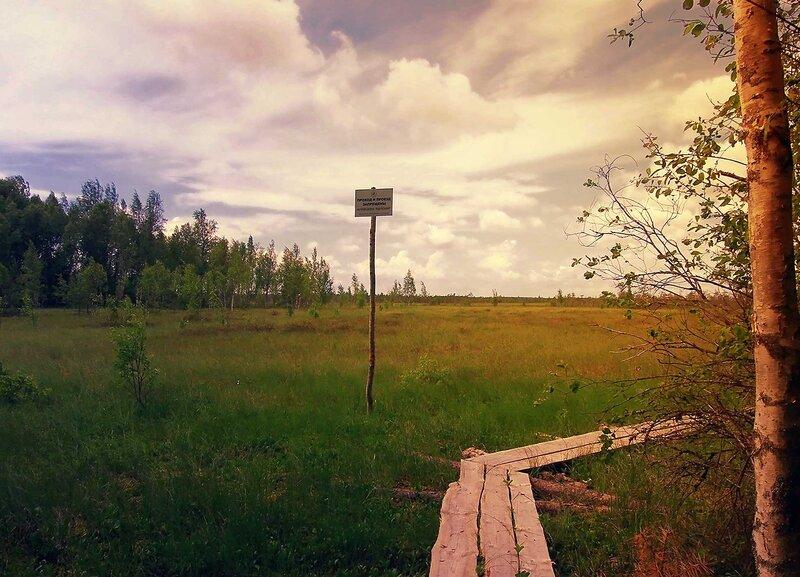На Рдейском болоте (32).jpg