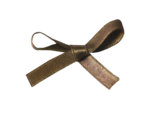 JofiaDevoe-Birthday-ribbon.png