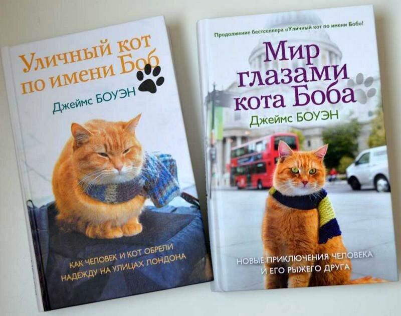 Мир глазами кота боба читать онлайн