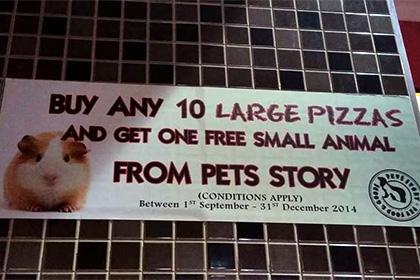 Pizza Hut Австралии предлагал посетителям за заказ домашнего питомца