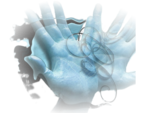 Hands_040914_Mika.png