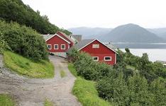 Фруктовая ферма Стейнсто (Steinstø Fruktgard)