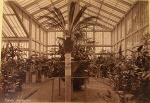 Вид одного из залов, где размещались экспонаты отдела садоводства.