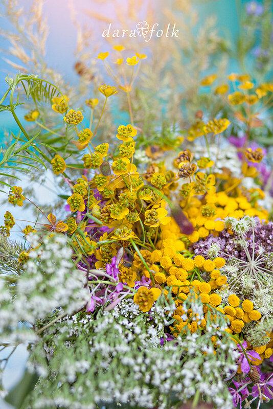 Сбор трав в Сибири в июле