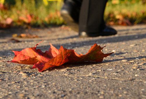 Осень. Ушла.