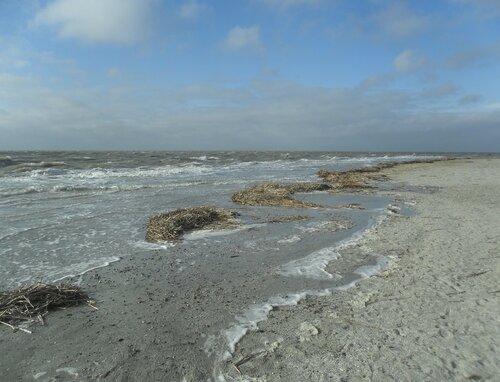 А берег волны успокоит ... SAM_5731.JPG