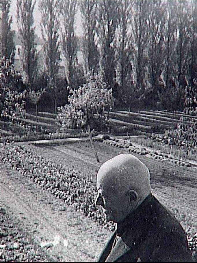 1960. Канвейлер в своем саду