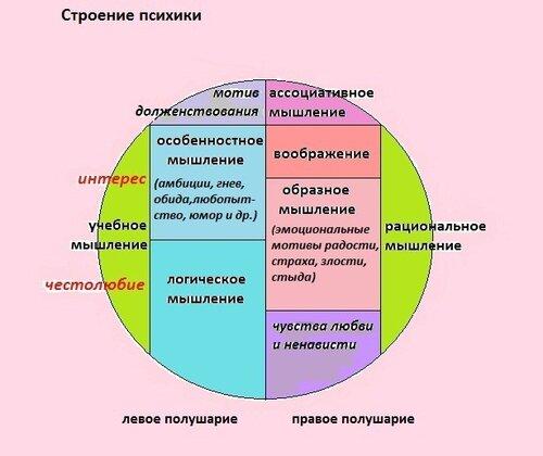 Мозг и психика: * проблема взаимосвязи мозга и психики сложна