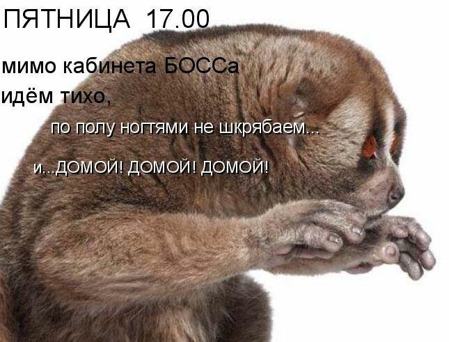 http://img-fotki.yandex.ru/get/5108/nemhinova63.7/0_50484_e00f6740_XL.jpg