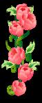 Цветы 27