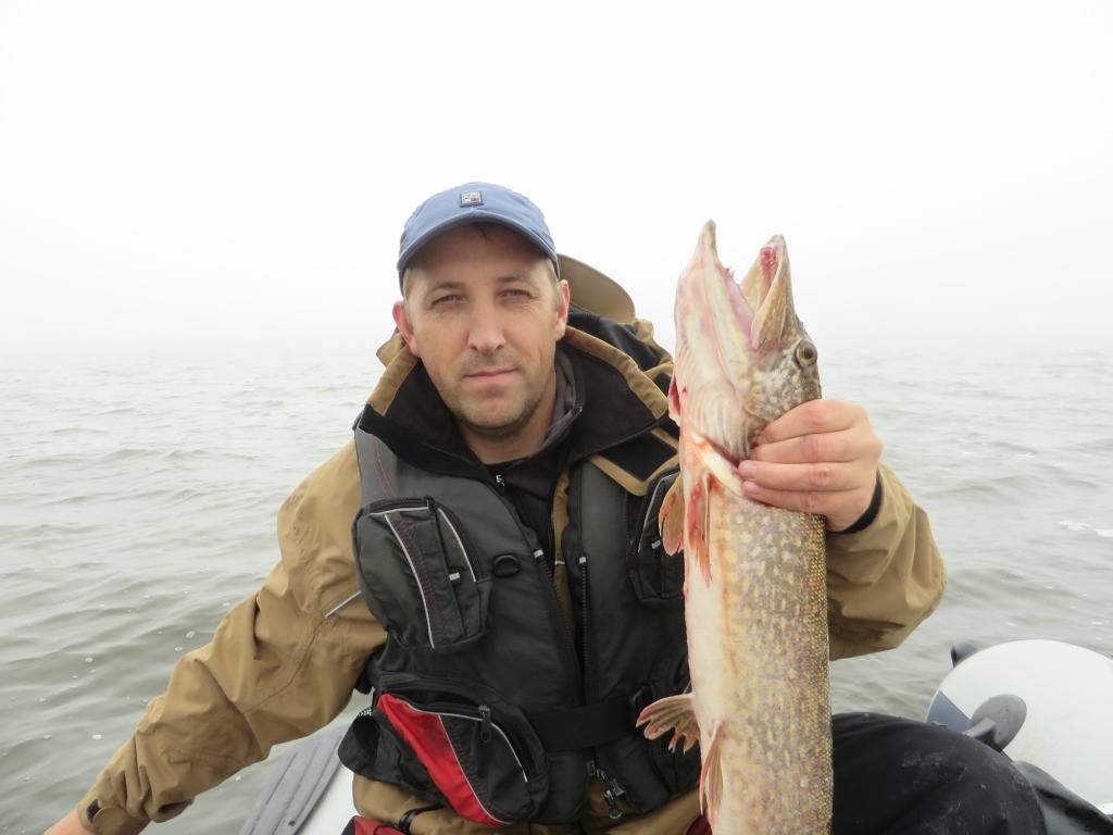 рыбалка на водохранилищах форум рыбаков