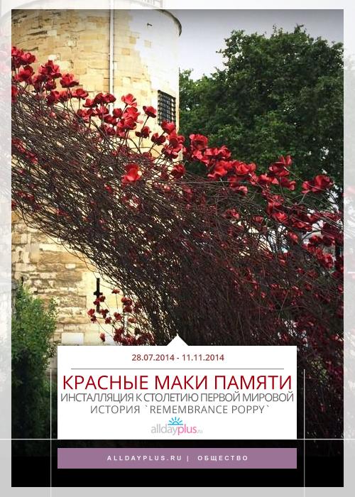 Красные маки, символ памяти, в инсталляции `Blood Swept Lands and Seas of Red`
