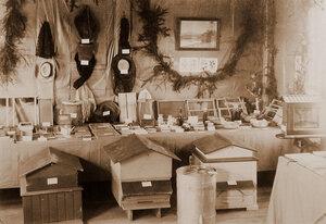 Вид части экспозиции в павильоне пчеловодства.