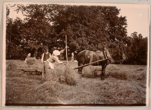 Крестьяне за уборкой сена на территории имения.