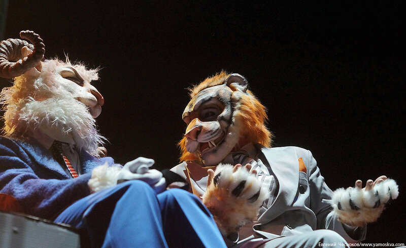 Осень. Цирковой мюзикл Мр Тигр. 23.10.15.26..jpg