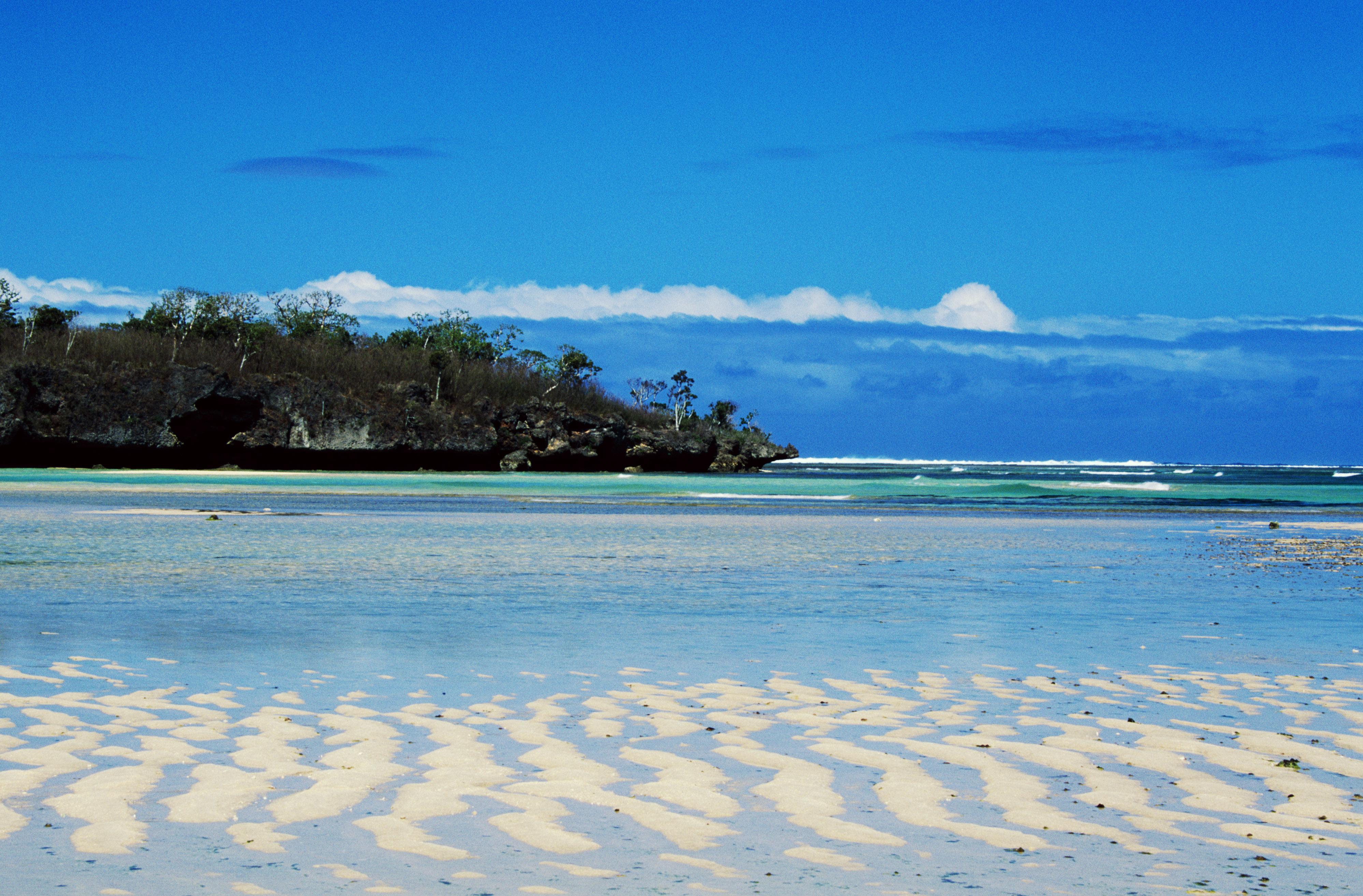 Блоги. Тропический рай. dodjik007, ЯндексФоткахltmore, «Тропический, альбоме, Фотографии, продолжается