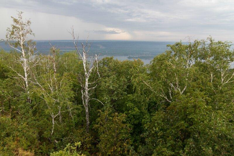 Растительность, гора Стрельная, Жигулевские горы