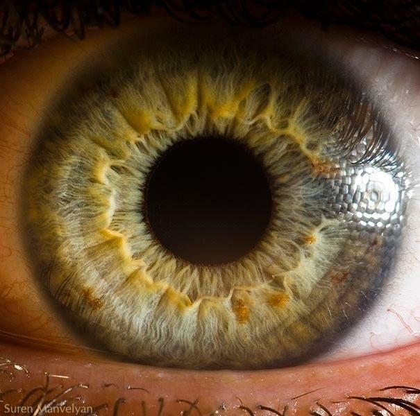 Макросъёмка человеческого глаза. Фот. Сурен Манвелян