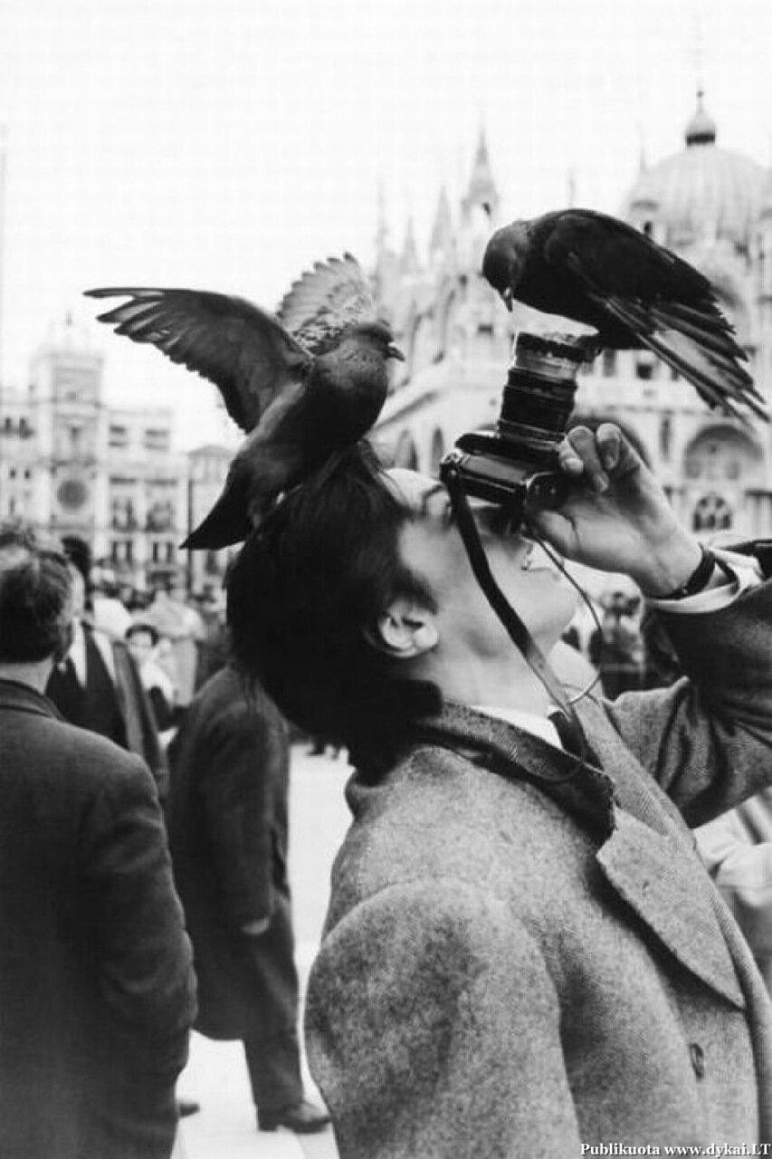 1962. Ален Делон