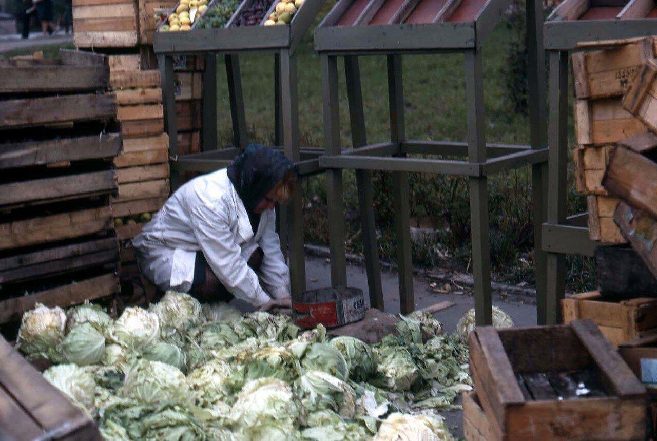 20. Новосибирск. Женщина что-то ищет в капусте