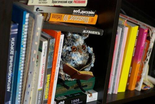 Сова в книгах, в руках — малюсенькая книжечка