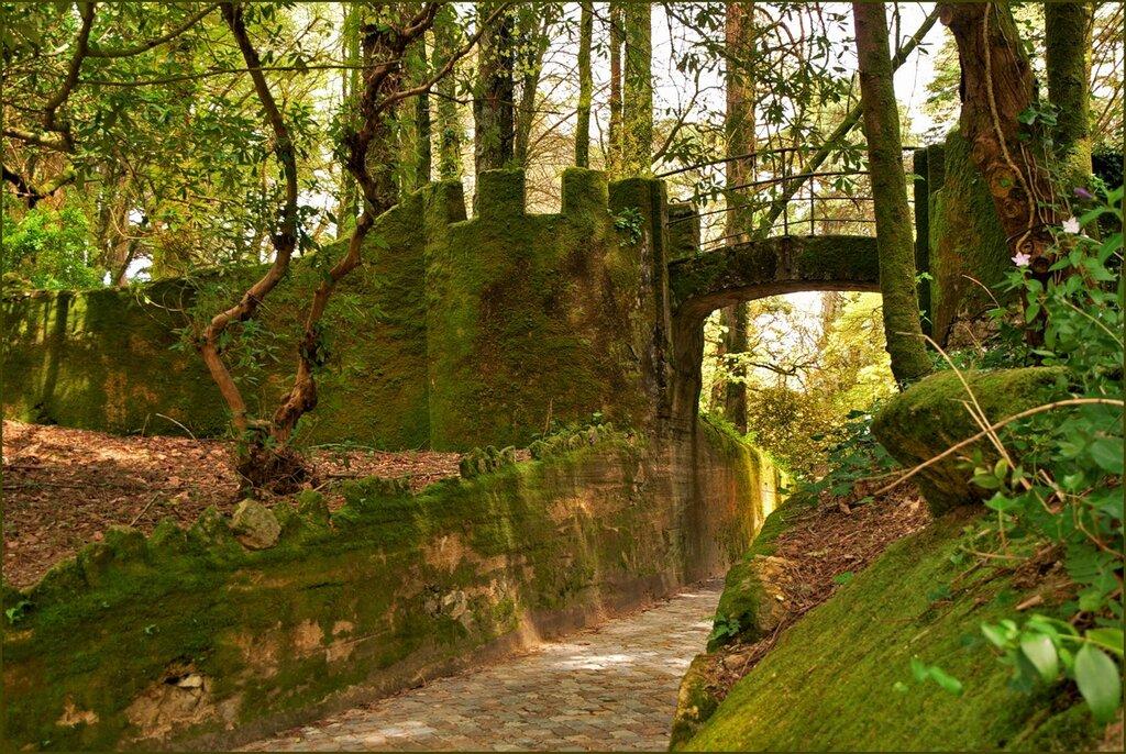 Парк дворца Пена