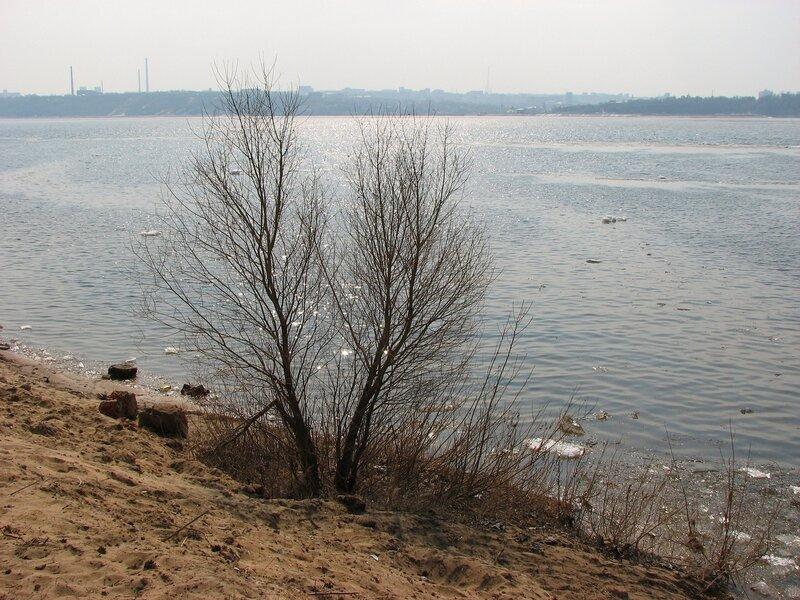 Весна, 2010.04.17