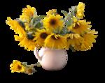 kTs_Bouquet_Senteur40.png