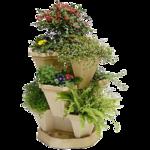 «Скрап -набор Мой сад» 0_5e0e4_5c595a04_S