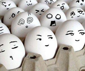 В Амурской области на «дальневосточных гектарах» начали разводить уникальной породы кур, несущих голубые яйца