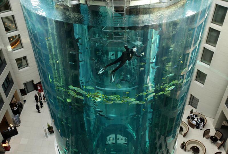 Огромный аквариум в Берлине (11 фото)