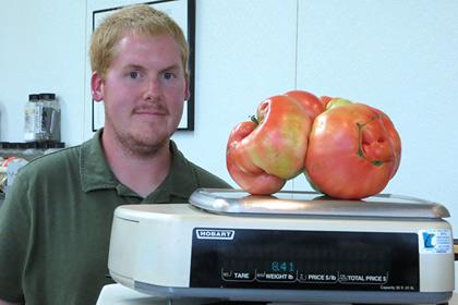 В Миннесоте вырос самый большой в мире томат