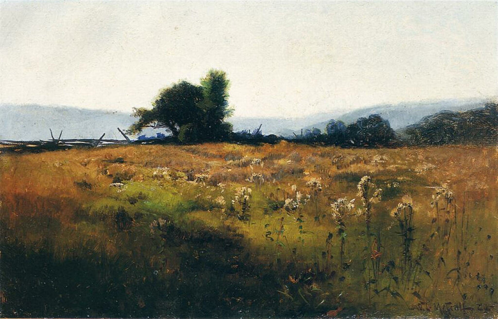 Mountain View from High Field, 1877.jpeg