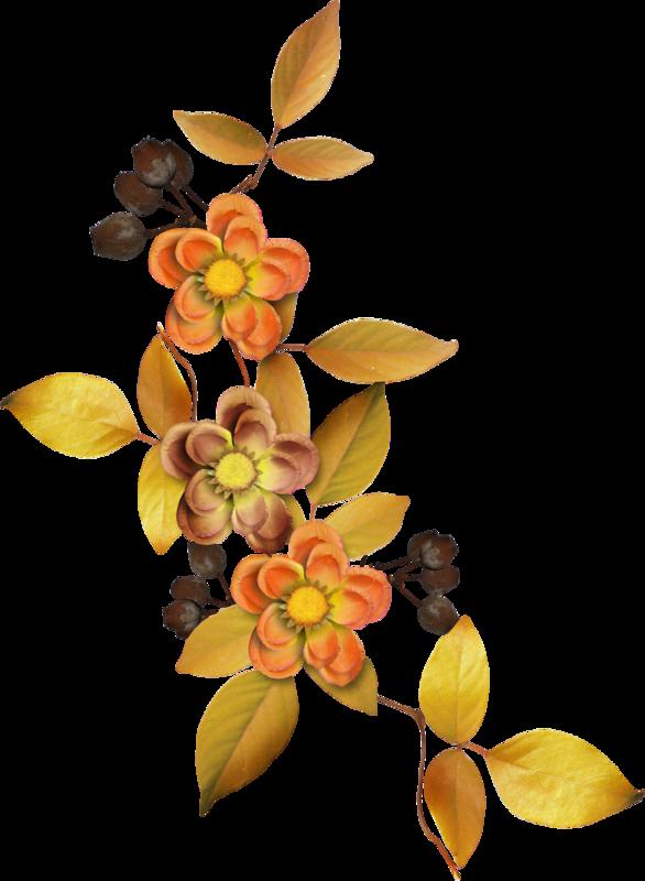 Carena_Autumn Crunch_41.png