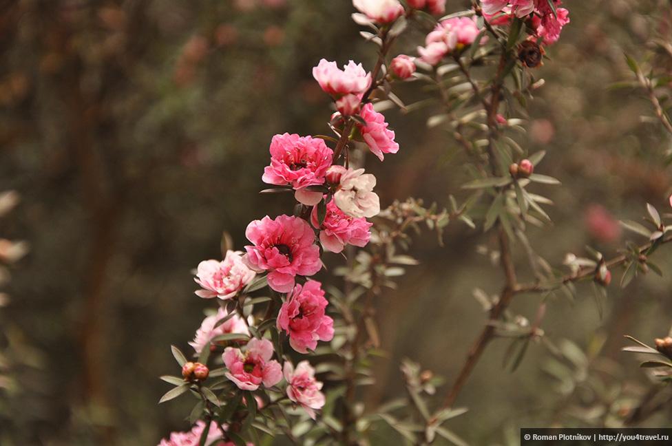 0 1919bb 14dce4f0 orig День 212 213. Прощай, Колумбия! Ботанический сад в Боготе