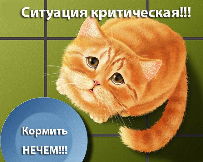0_a5641_660008dd_XL.jpg